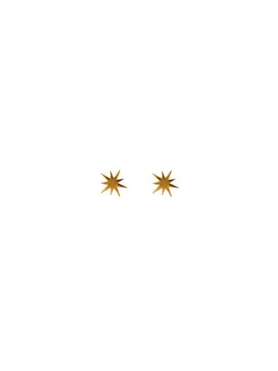 Brinco Estrela Polar